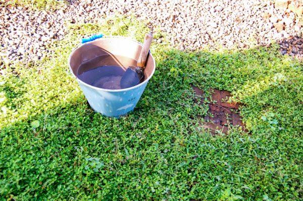 バケツに貯まった雨水の使い道